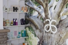 My product shelves & tree of life